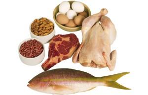 aineenvaihdunta proteiinit